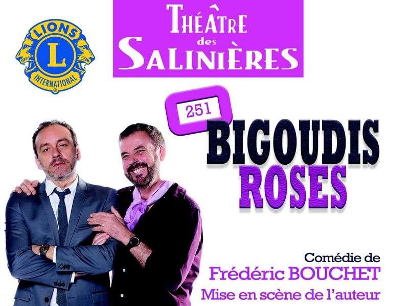 image de Soirée théâtre : 251 Bigoudis Roses