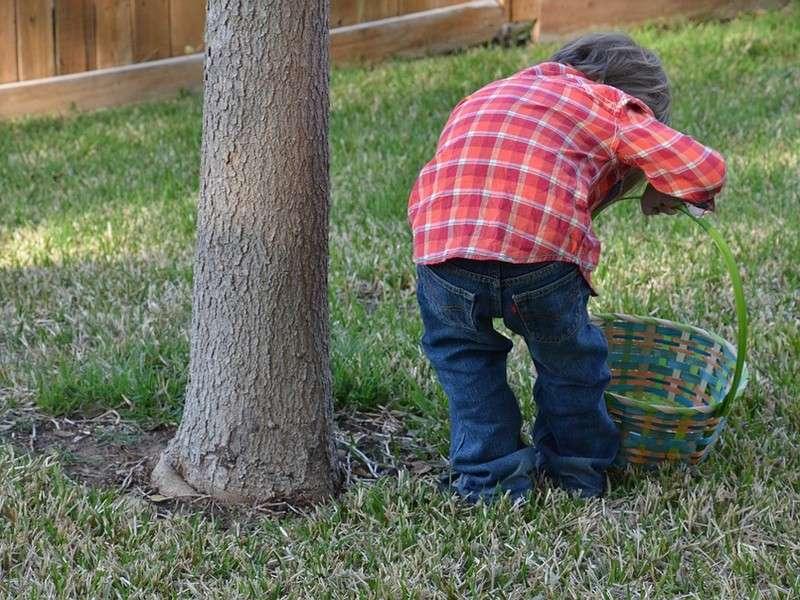 image de Grande chasse aux oeufs de Pâques