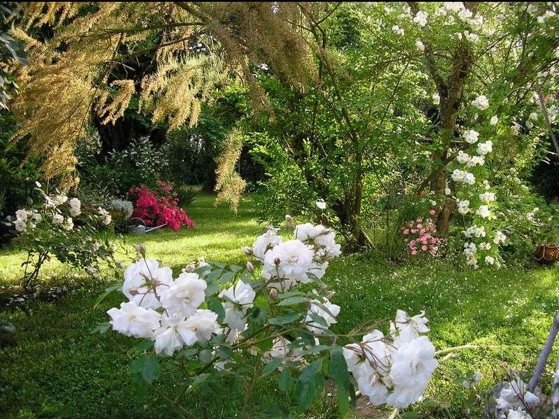 image de Au Jardin de Montfleuri