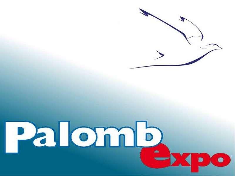 image de 4ème Salon PalombExpo