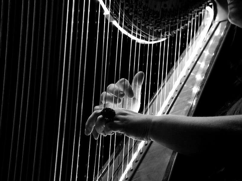 image de Concert de harpe