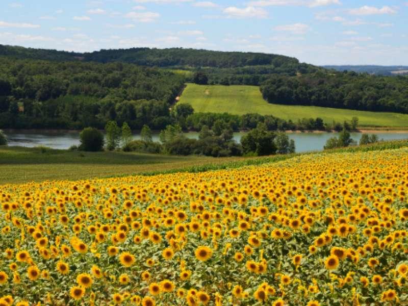 image de Sainte-Gemme, randonnée dans les collines Gasconne
