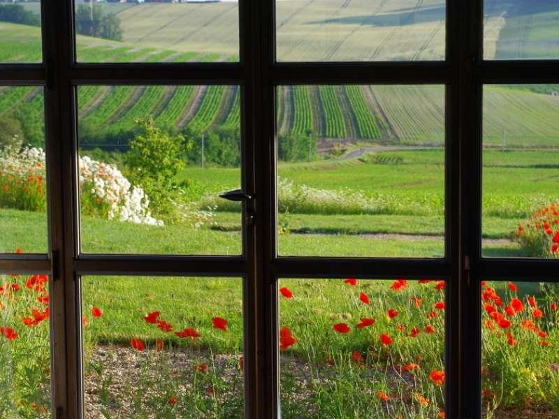 image de Le hameau des coquelicots - la Maison des Bleuets